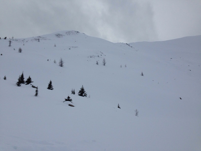 Our ski lines are in that dull light somewhere...